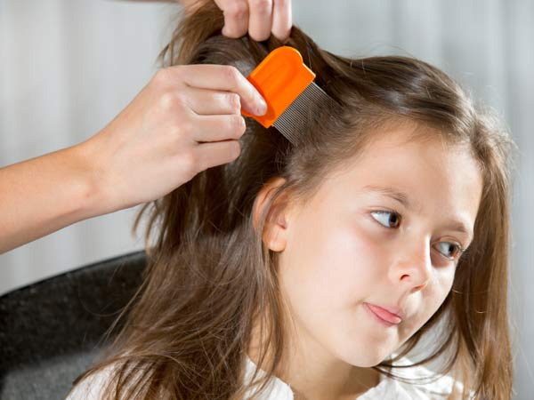 Little girl sitting in a chair having her hair combed by a lice expert, looking for lice.