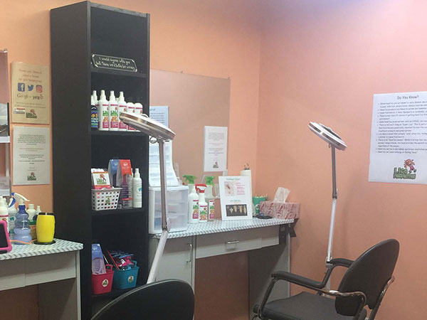Lice Perspectives workstation, with a salon chair and lamp used to search for head lice.
